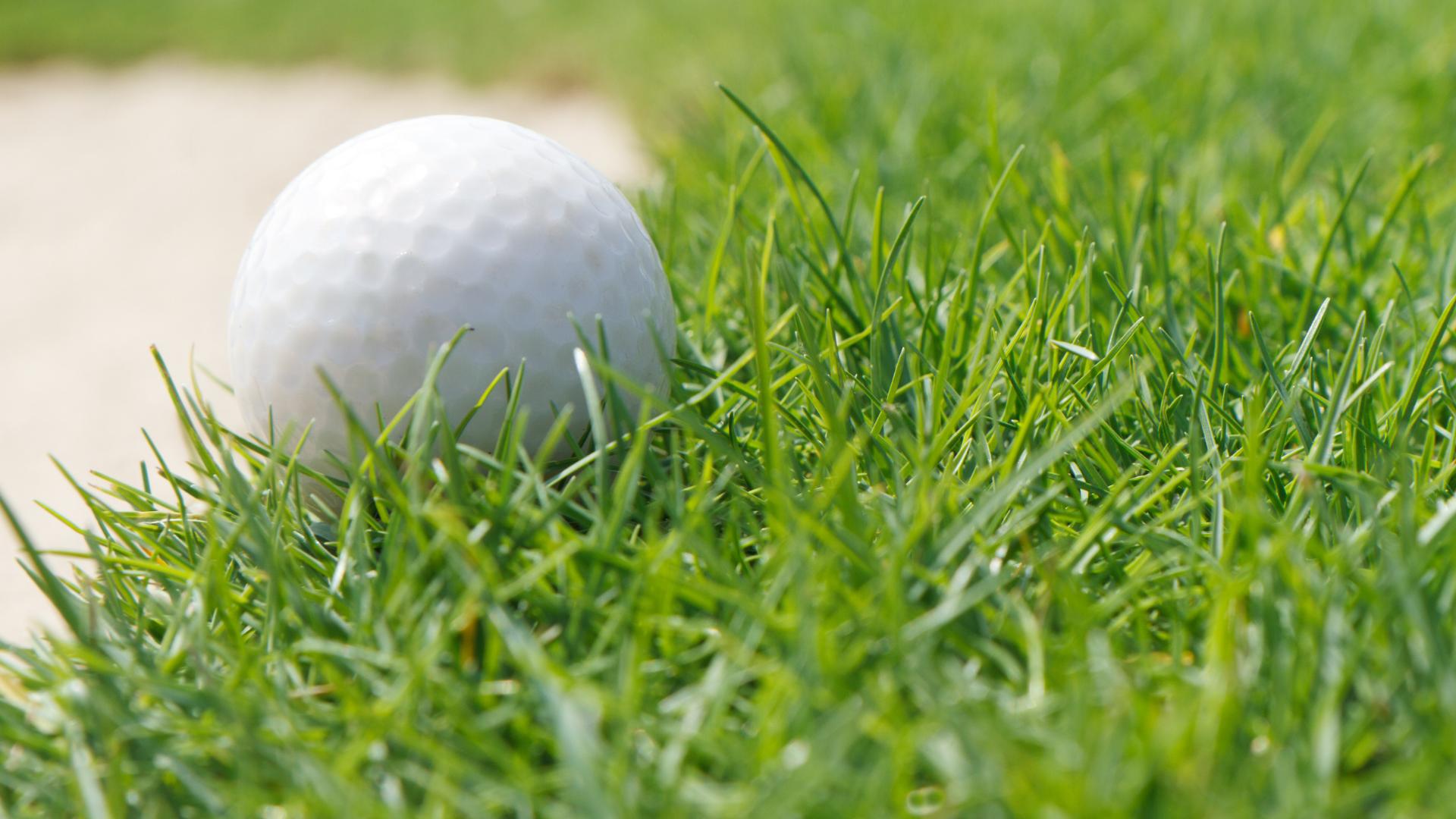 Scandia Golf Tournament